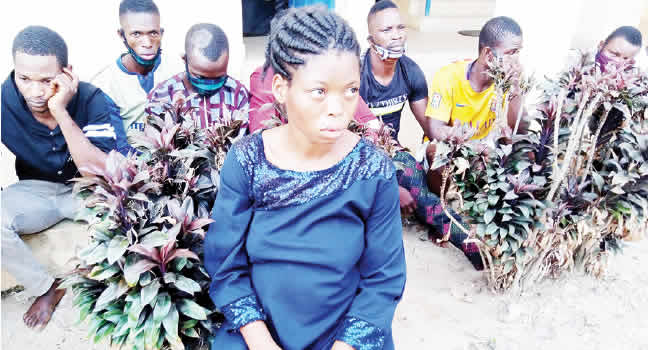 HEARTBREAKING! Wicked Housewife Poisons Stepson, Gives Shocking Reasons