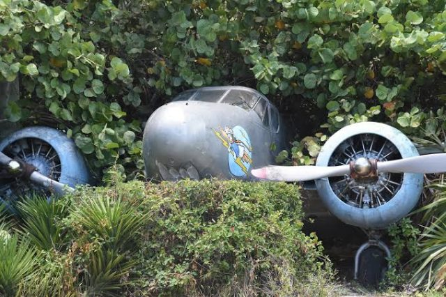 Fate of Pilot Unknown After A Missing Air Force Alpha Jet Fighter Was Discovered Crashed In Abba-Jille Forest