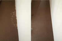 Download Carpet Patch Repair Calgary free software ...