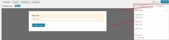 Field options for WordPress form date-time field