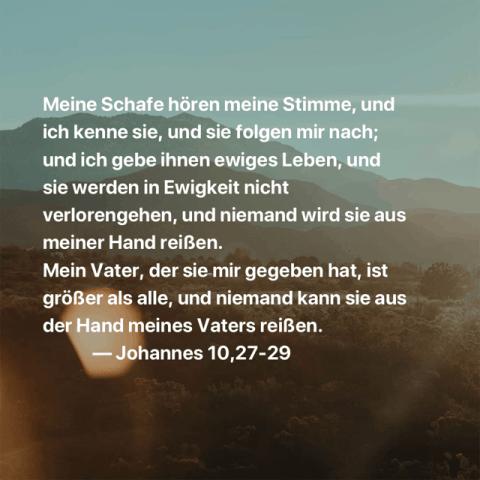 Meine Schafe hören meine Stimme, und ich kenne sie, und sie folgen mir nach; und ich gebe ihnen ewiges Leben, und sie werden in Ewigkeit nicht verlorengehen, und niemand wird sie aus meiner Hand reißen. Mein Vater, der sie mir gegeben hat, ist größer als alle, und niemand kann sie aus der Hand meines Vaters reißen. Johannes 10,27-29