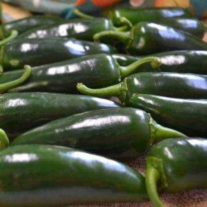 We Grow Jalapeno Peppers