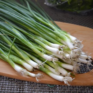 We Grow Green Onions