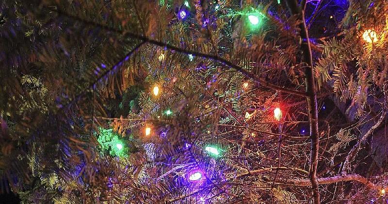 little rock tree lighting