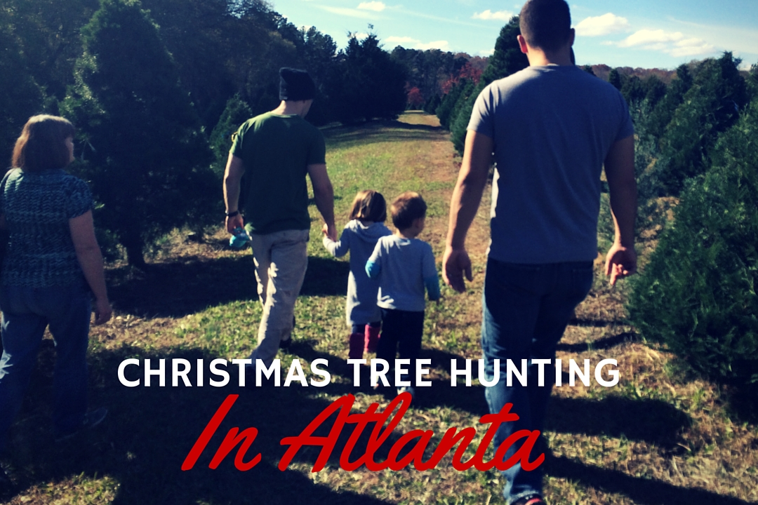 christmas tree farm atlanta