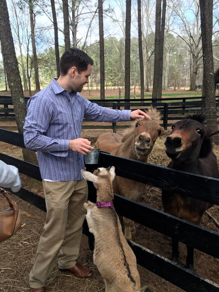petting zoo at serenbe