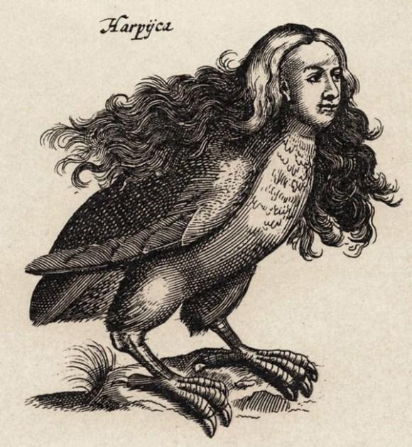 Harpy1