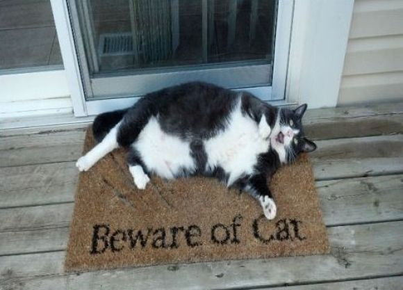 Beware! Take care!