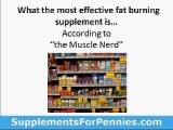Fat Burner Supplements