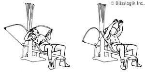 Back Exercises: Bowflex Xtreme 2 Back Exercises