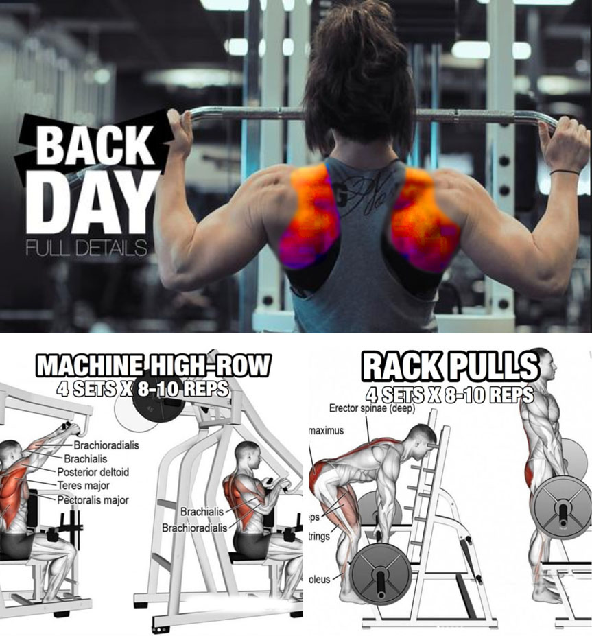How To Train The Lats Video Guide Weighteasyloss Com
