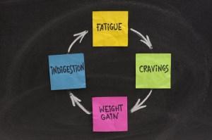 No Perfect Diet