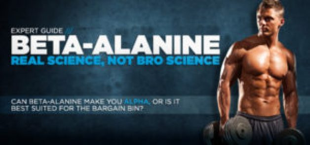 Beta Alanine Effects Alpha