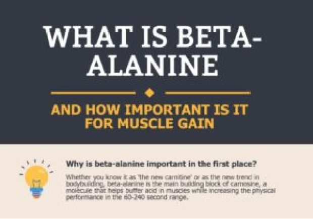 Does Beta Alanine Work well