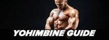 Yohimbe for Bodybuilding