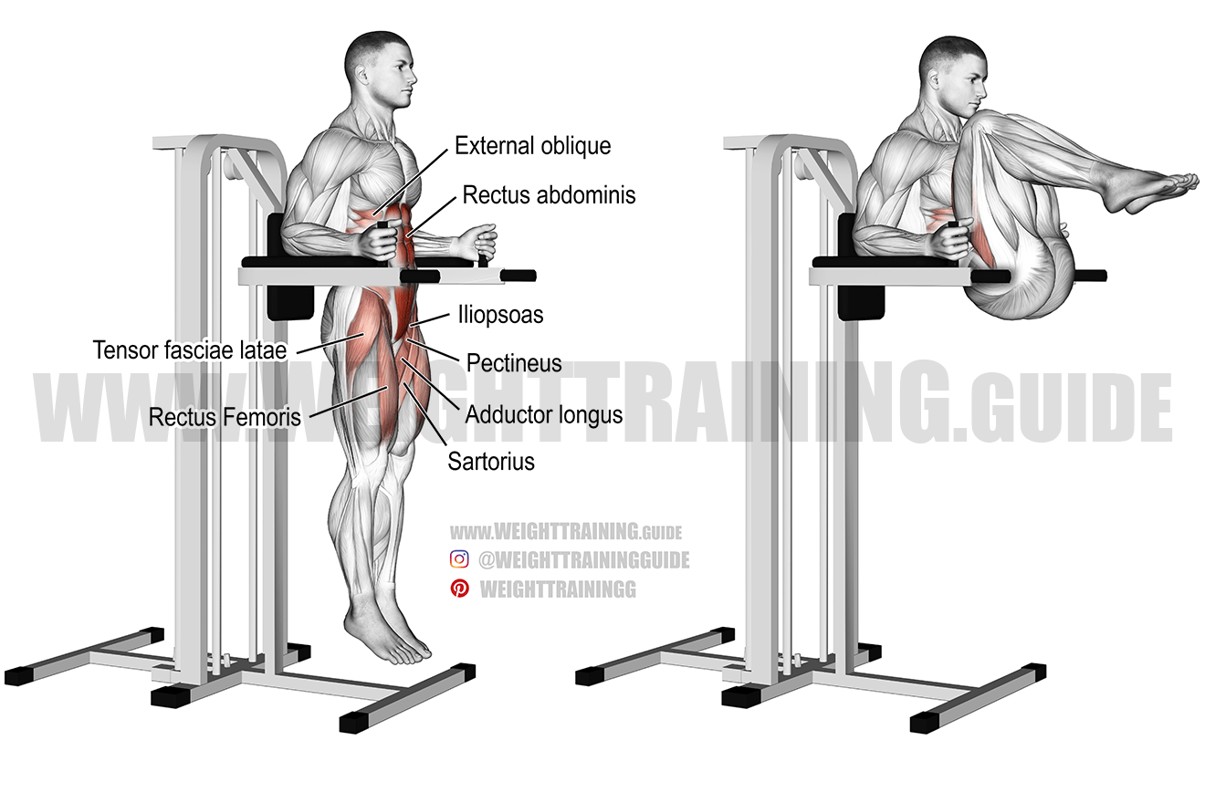 Captain's chair leg and hip raise exercise instructions