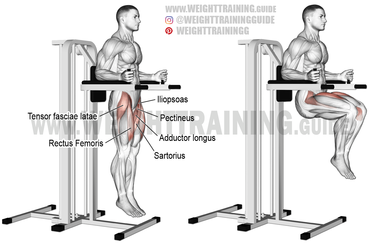 Captains chair leg raise exercise guide and video