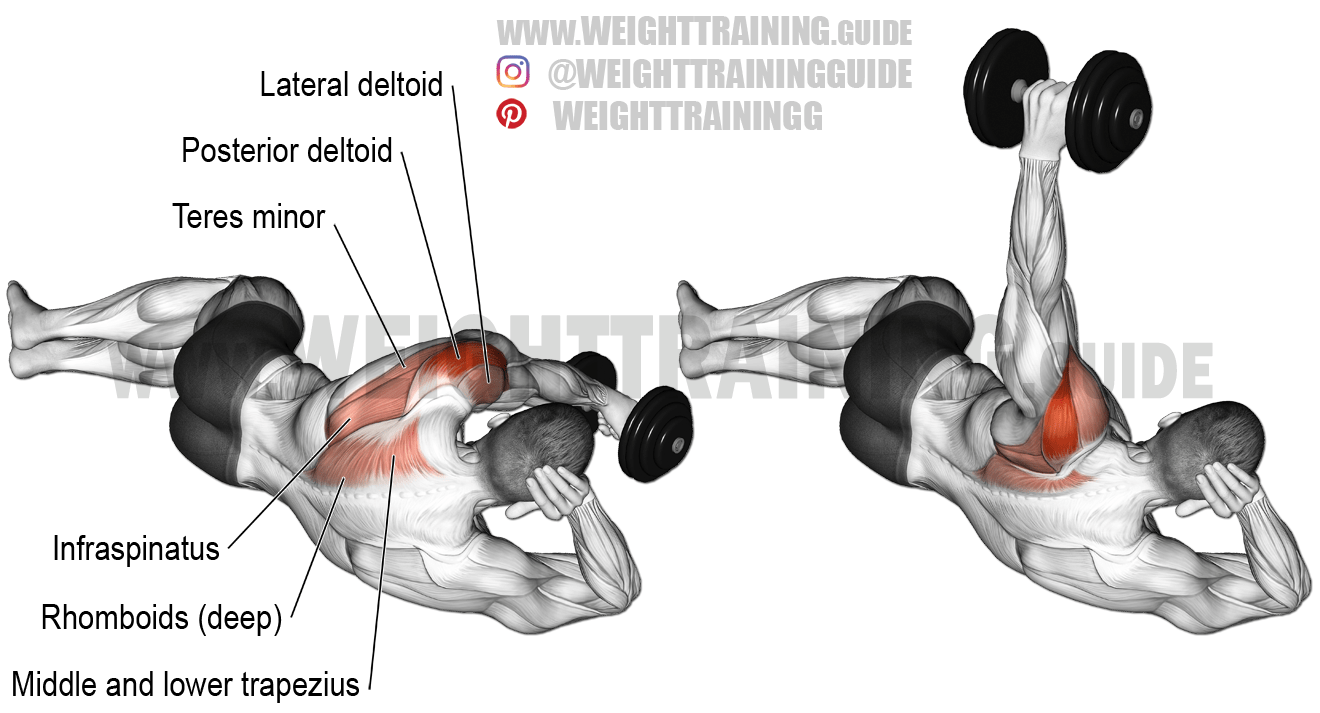 Side-lying dumbbell rear delt raise exercise instructions