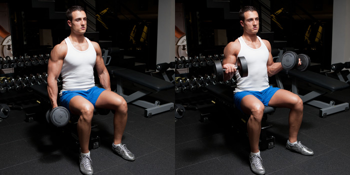 Seated Dumbbell Biceps Curl With Twist Weight Training