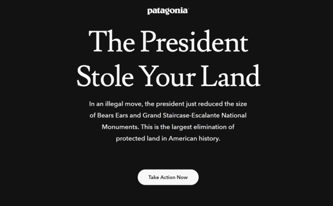 Patagonia competitive positioning