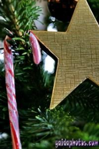 Weihnachtsmann, Nikolaus, Nikolausgedichte, Brav, Schlitten