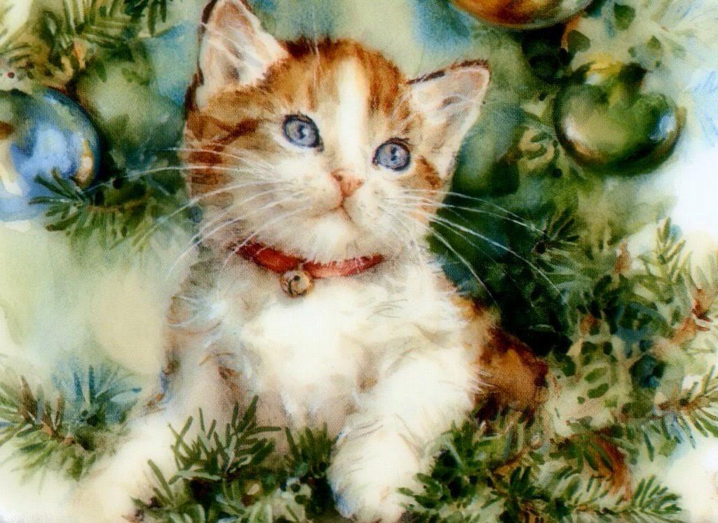Weihnachtsbilder Tiere Weihnachtsbilder Lizenzfrei
