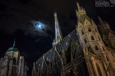 Wien_Fruehling_037