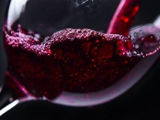 Wein Primärfurcht Tannin Entwicklungsphasen