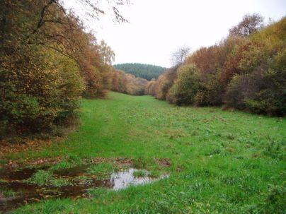 2013-10-26_Franzenheim-Runde06