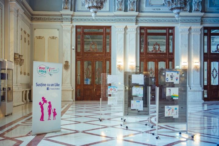 Expozitie 1 Iunie Zi Libera la Senat_Itsy Bitsy 2016 - Copy