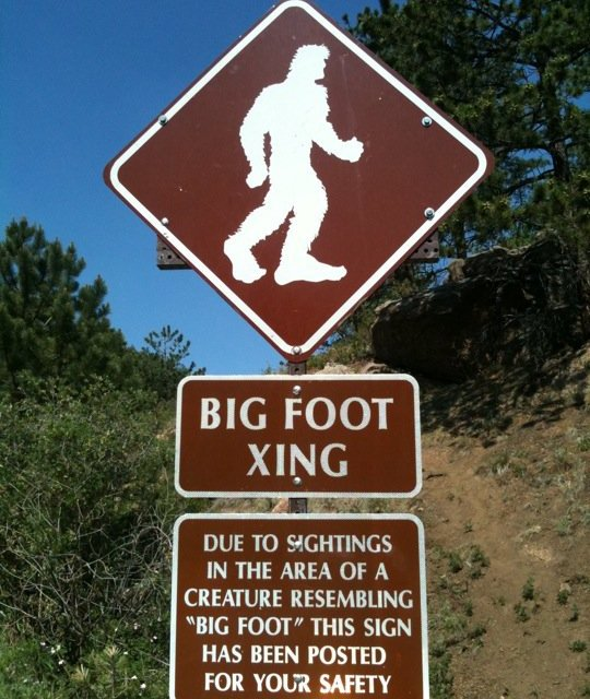 What is Cryptozoology?
