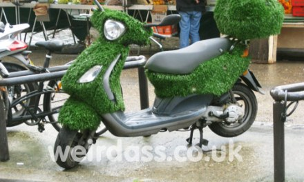 Going Green – REALLY Green!