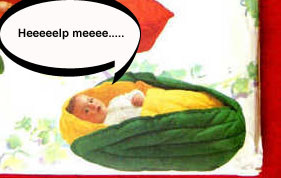 Baby_veggie_buntingscropped