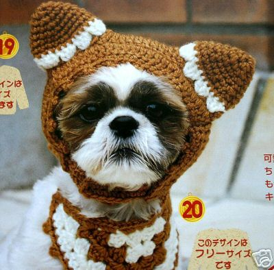 Dog_hat_japanese