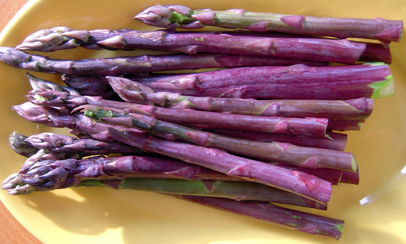 https://i0.wp.com/weirdcombinations.com/wp-content/uploads/2010/05/fresh-purple-asparagus.jpg