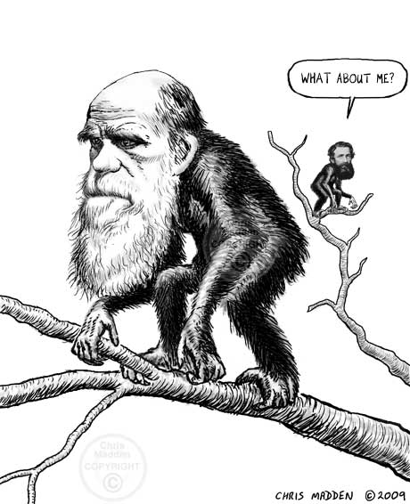Should Darwin be Given all of the Credit for the Theory of
