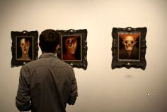 An art lover gazes upon some of the paintings by Chet Zar