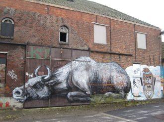 It's a Bull Market