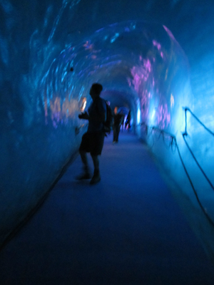 Inside the Ice Grotto.