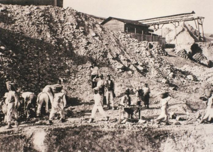 carusi-kid-miners
