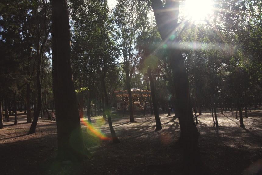 ErezAvissar_MX033