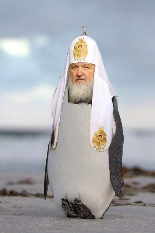 patriarch-kirill-penguins3