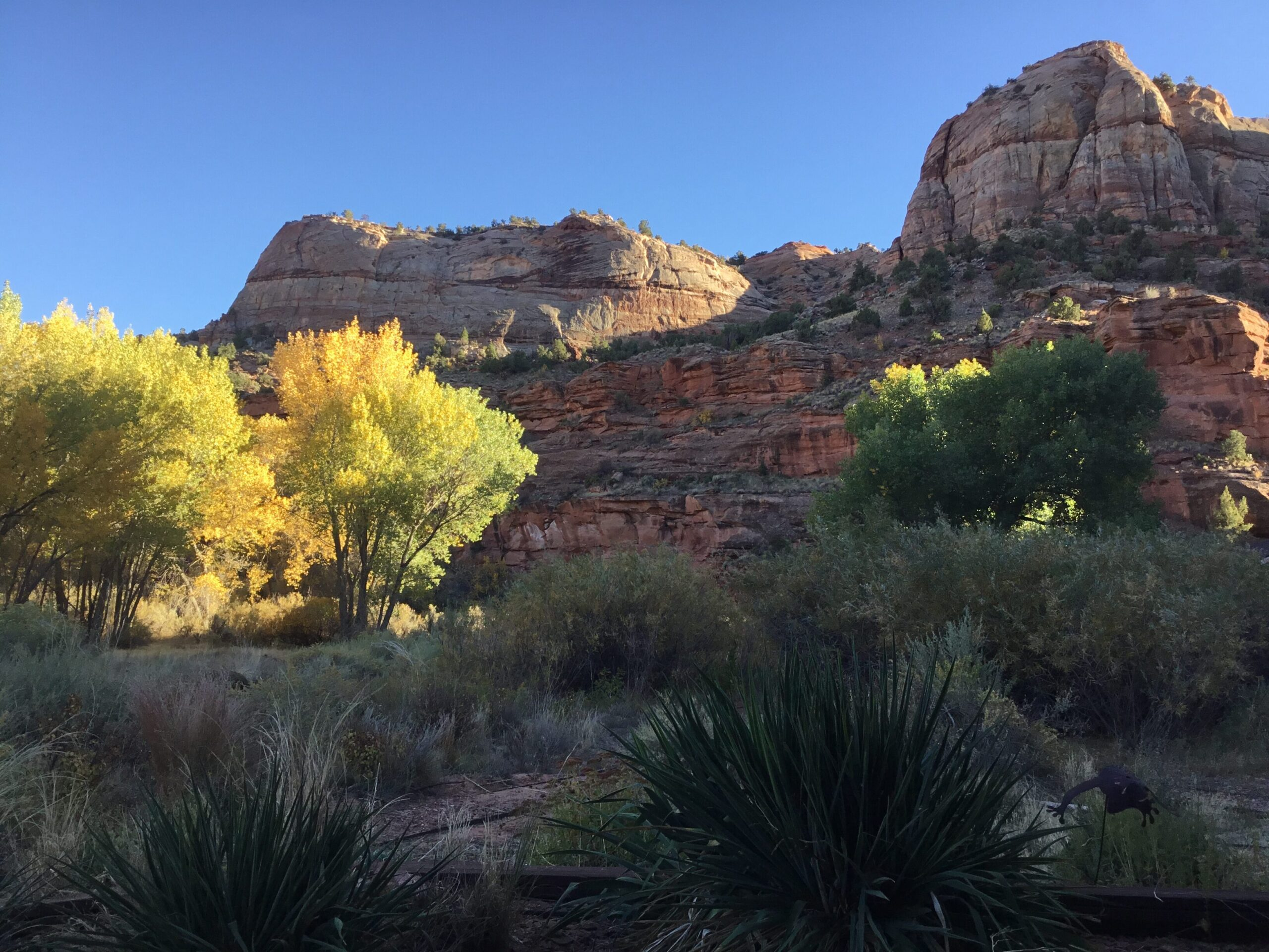 View from the front patio, fall colors going on display
