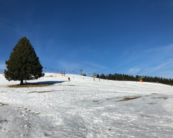Schwarzwald7