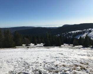 Schwarzwald9