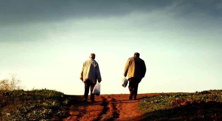 Weise Freunde bleiben stets das beste Buch des Lebens. - Zitat von Pedro Calderón de la Barca