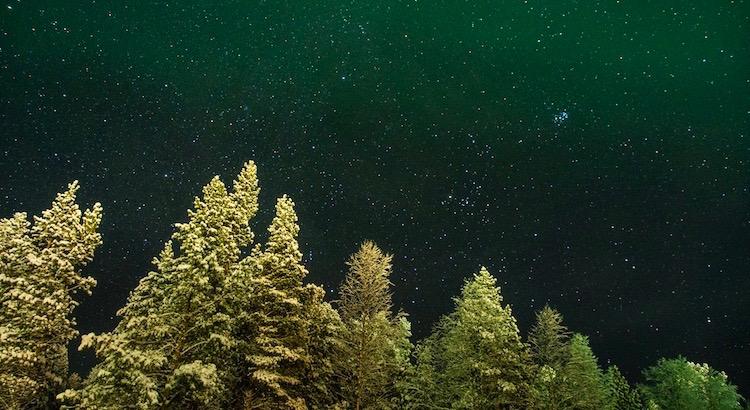 Kopf hoch, sonst kannst du die Sterne nicht mehr sehen. - Unbekannt