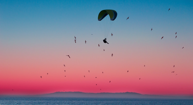 Wenn man den Verstand als Fallschirm für Gefühle benutzt, ist die Landung auf dem Boden der Tatsachen weniger hart. - Helmut Dippel