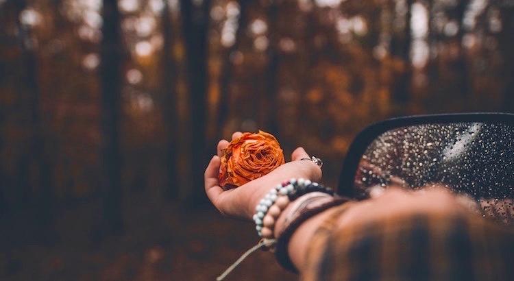Solange wir glauben, etwas zu brauchen, etwas verbessern zu wollen, etwas verändern zu wollen, sind wir im Mangel und in der Angst gefangen. Erst wenn du erkennst, dass alles seinen Sinn hat so wie es ist, kannst du der Liebe im Sein begegnen. - Unbekannt