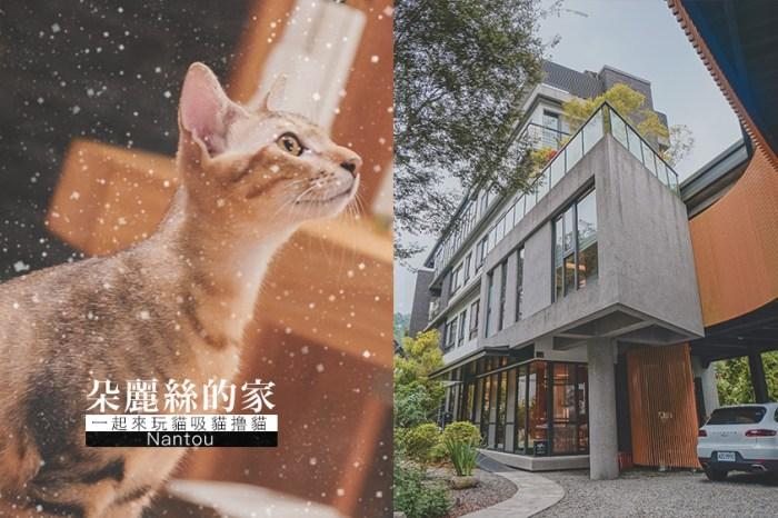 日月潭民宿推薦//朵麗絲的家,寵物友善旅館貓奴天堂,一起來玩貓吸貓擼貓
